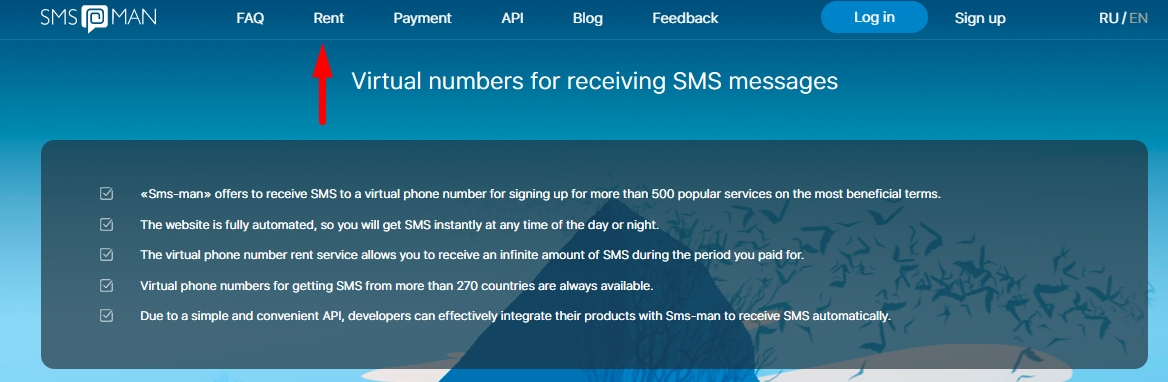 Payments at sms-man.com