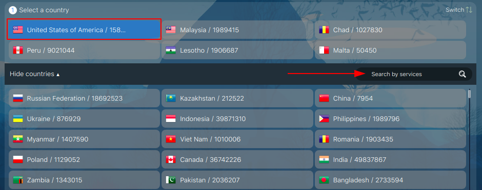 Choose a country of a mobile operator for your Twitter fake number