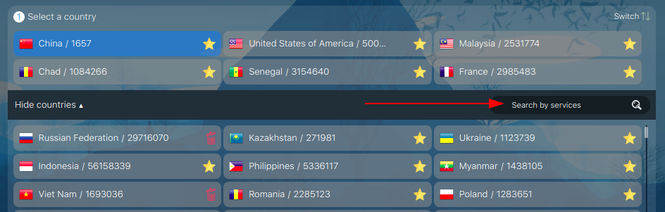 Choose a country for a virtual number to open a second YouTube account
